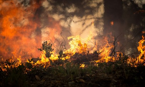 Hurrikanwinde verstärken die Waldbrände in Kalifornien – fast 200.000 Menschen mussten evakuiert werden