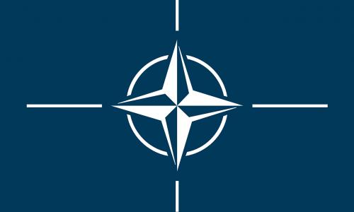 """""""Hirntot""""-Sager: Nato könnte Expertengremium schaffen"""
