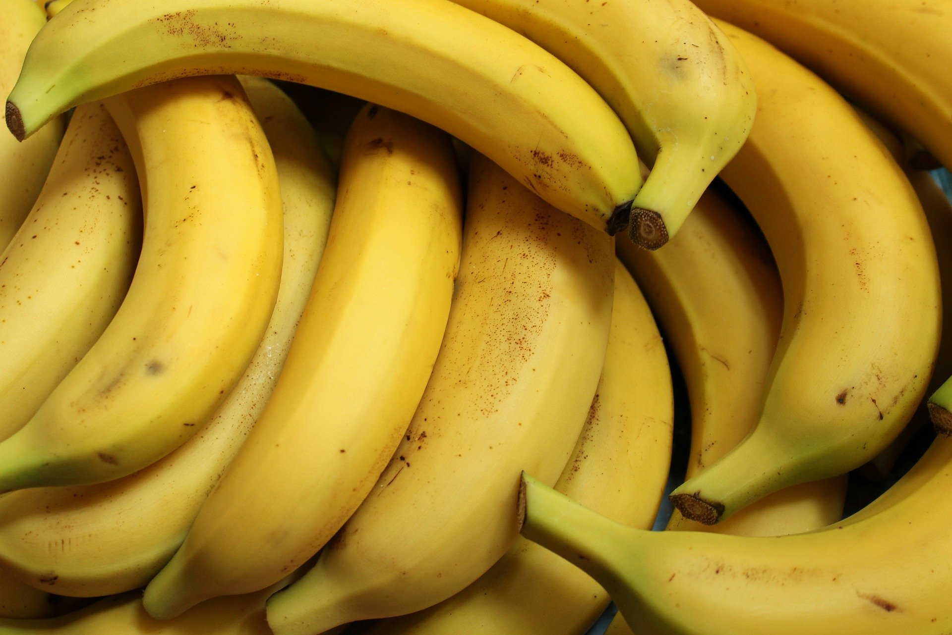 120.000-Dollar-Banane bei Stunt aufgegessen