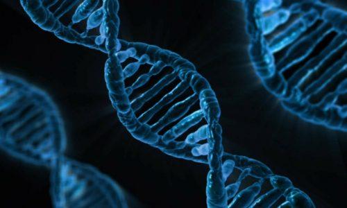 China: Wissenschaftler hinter genmanipulierten Babys verurteilt
