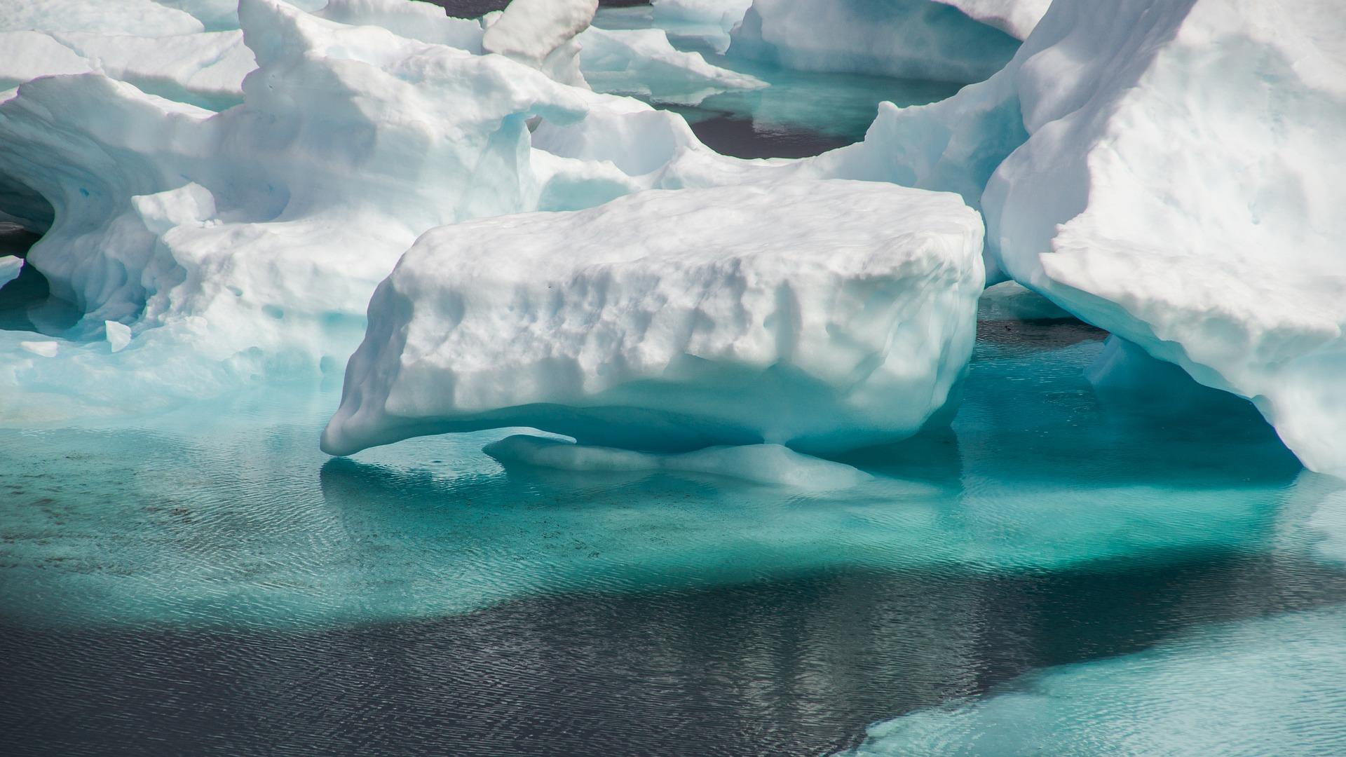 Schweiz: Atlantik-Eis als Getränk erhältlich