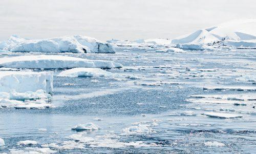 Rekord: Antarktis-Wetterstation meldet 18 Grad Celsius