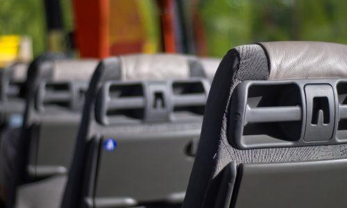 Wien: 8 Busfahrer nach Zeigen von türkischem Extremisten-Gruß entlassen