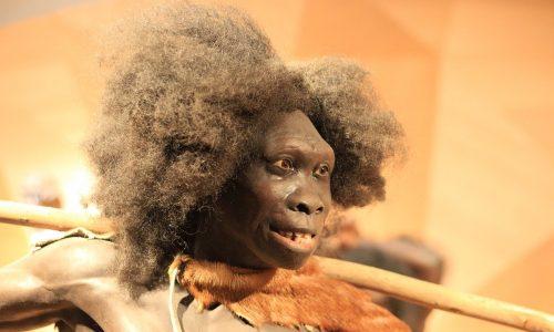 Neanderthaler waren schlauer als bis jetzt gedacht