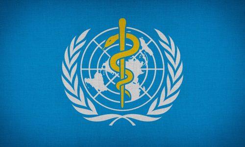 """""""Unerwünschte Person"""": Staat weist WHO-Landeschef aus"""